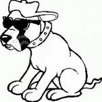 Kuža s sončnimi očali